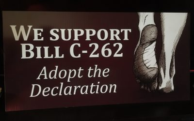 "Countdown to ""Walk the Talk"" in Support of Reconciliation Bill C-262 (day 46)"
